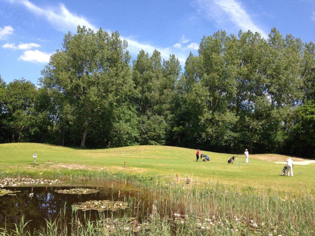 GolfOckenburgh-zomer
